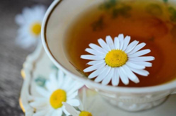 afternoon tea canterbury